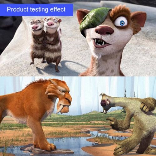 Product testing effect